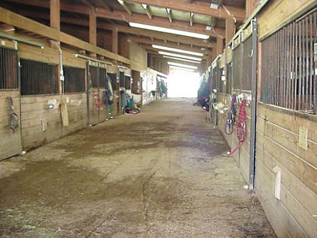 seven oaks ranch stall aisle.jpg