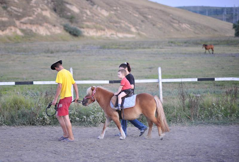 How to Safely Introduce Children to Horse Riding
